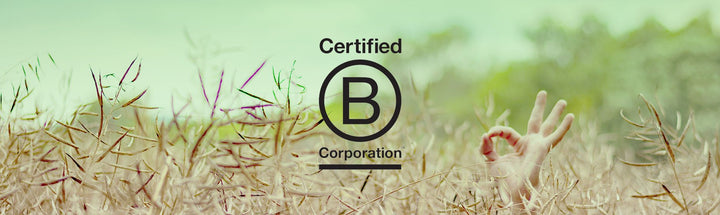 Certified B Corporation - PATCH