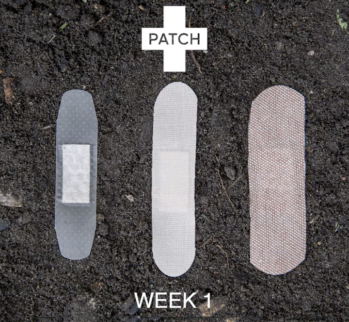 PATCH - Watch our time lapse