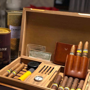 Travel Cigar Humidor Gift for Dad