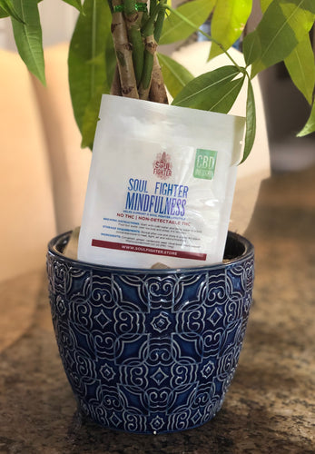 Single Sample Mindfulness CBD Infused Tea
