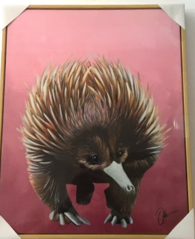 CR AUSTRALIAN ANIMALS CANVAS ECHIDNA - Gifts R Us
