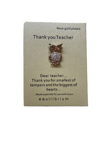 EQLB SENTIMENT PIN TEACHER - JJs Newsagency plus