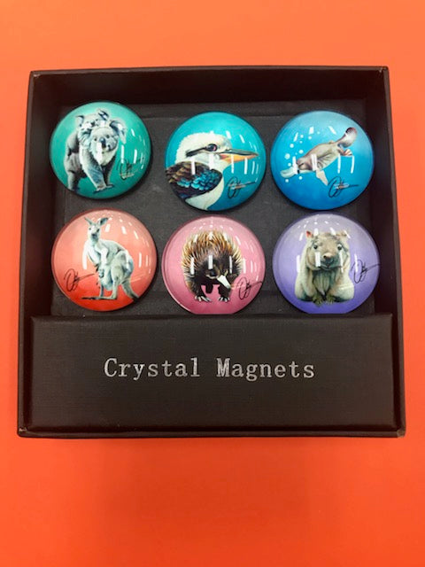 CR AUST ANIMAL MAGNET SET S/6 - JJs Newsagency plus