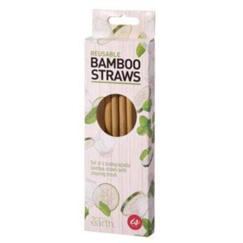 IS GIFT REUSABLE BAMBOO STRAW(SET OF 4) - JJs Newsagency plus