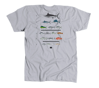 AVID Men's Tee Shirt Large / Silver Grey AVID, Men's Fish Chart Tee (Silver Grey)