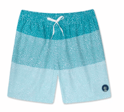 Chubbies Men's Bathing Suit Large / Blue Chubbies, Men's Whale Shark Swim Volleys (Blue)