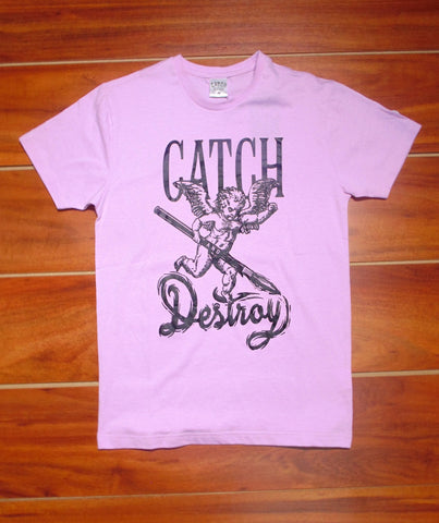 Catch and Destroy