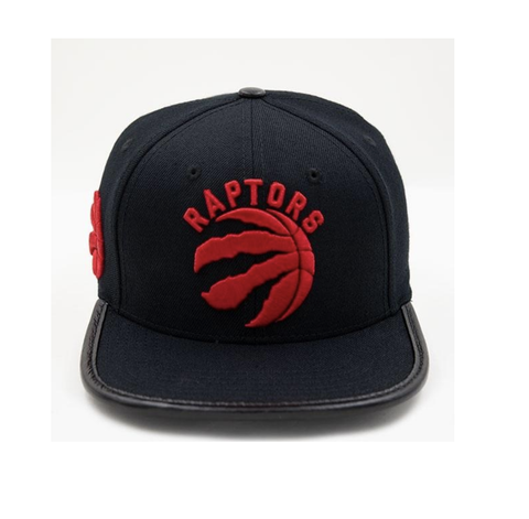 Toronto Raptors Logo Hat (Black)