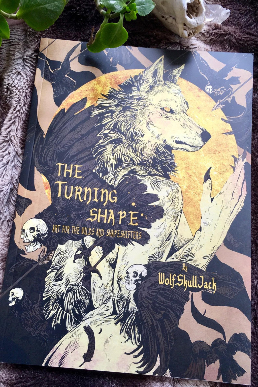 The Turning Shape art book