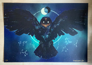 Night Owl A4 PRINT