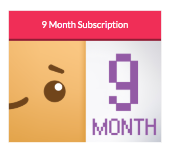 BoxyChan - Girl Box - 9 Month Subscription