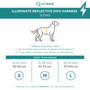 Illuminate Reflective Dog Harness
