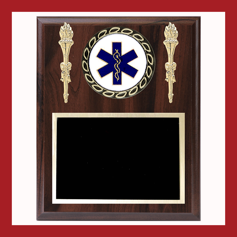 Star of Life Wreath Subject Mounts With Torches