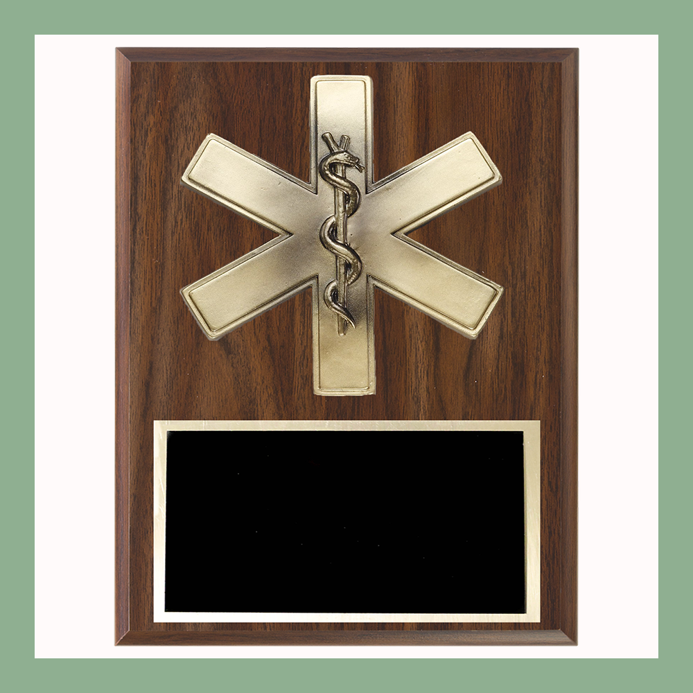 Star of Life Plaque