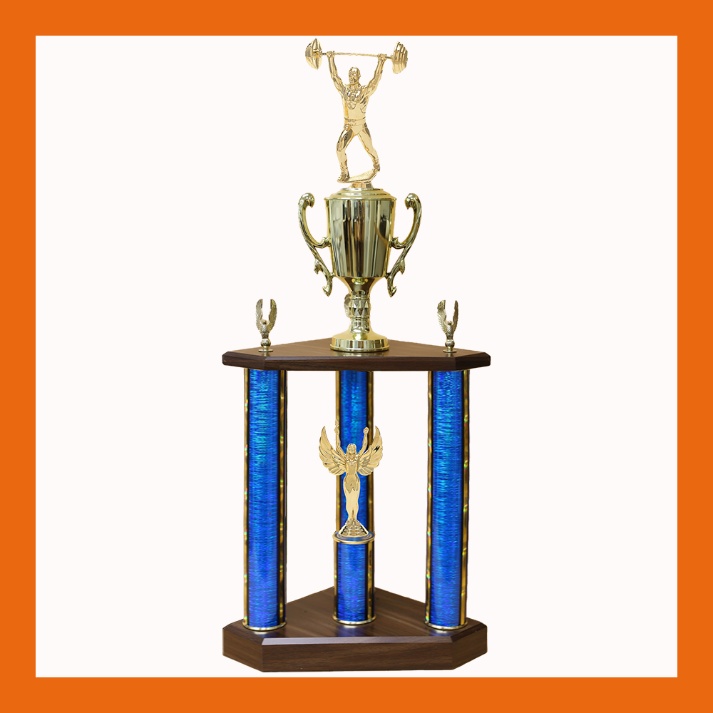 Weightlifting & Wrestling Three Poster Trophy