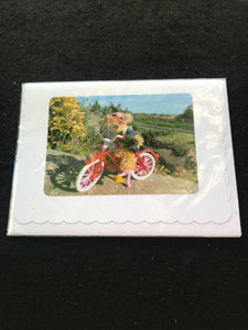 No. 5. Teddy Bear greeting cards, blank for your own message.  Cards by Hardy Bears designer June Kendall