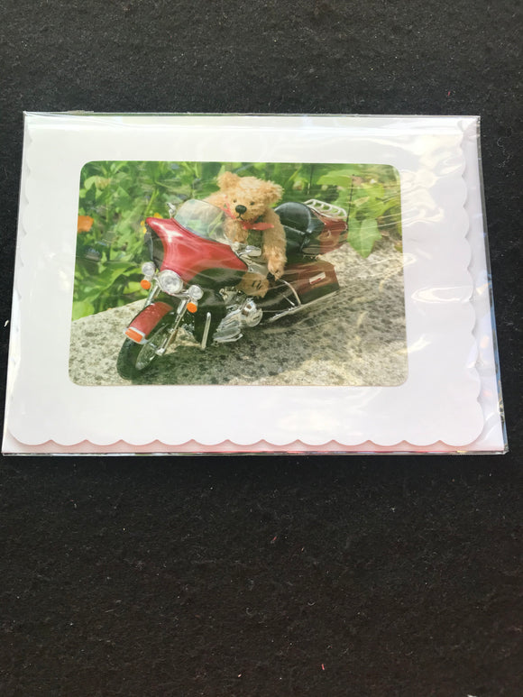 No. 1.  Teddy Bear greeting cards, blank for your own message.  Cards by Hardy Bears designer June Kendall