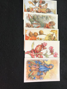 Flower Fairies Postcards