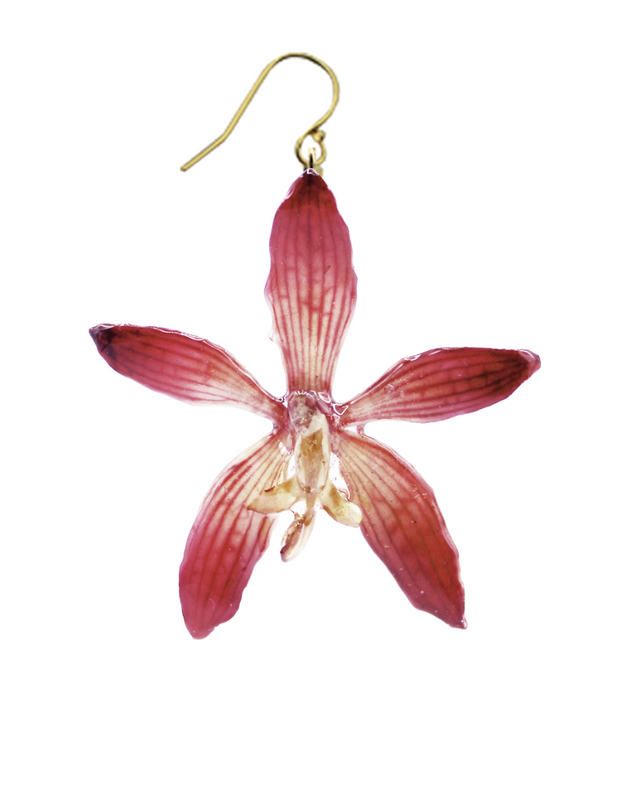 Pink Tiger Orchid Earrings