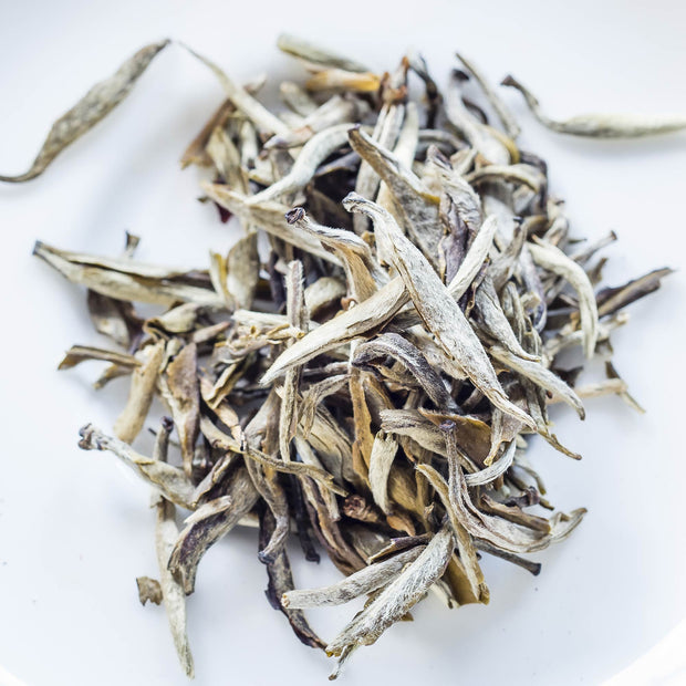 Silver Tip Jasmine White Tea Monthly Subscription