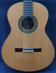 Castillo Classical Guitar 204