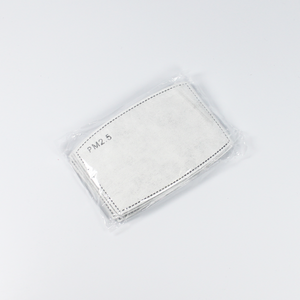 PM 2.5 filters - Pack of 10