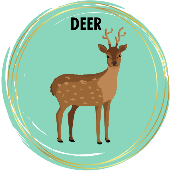 Deer Diamond Painting Kits