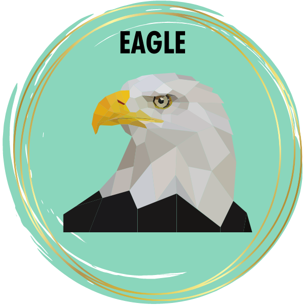 Eagle Diamond Painting Kits