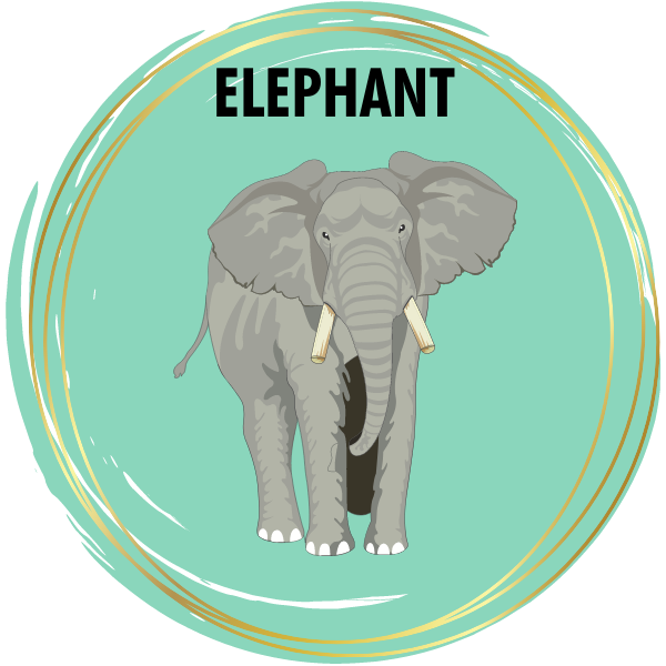Elephant Diamond Painting Kits
