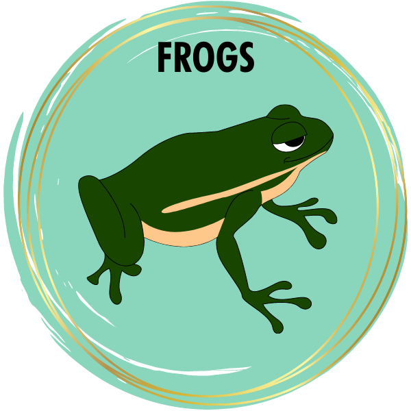 Frog Diamond Painting Kits