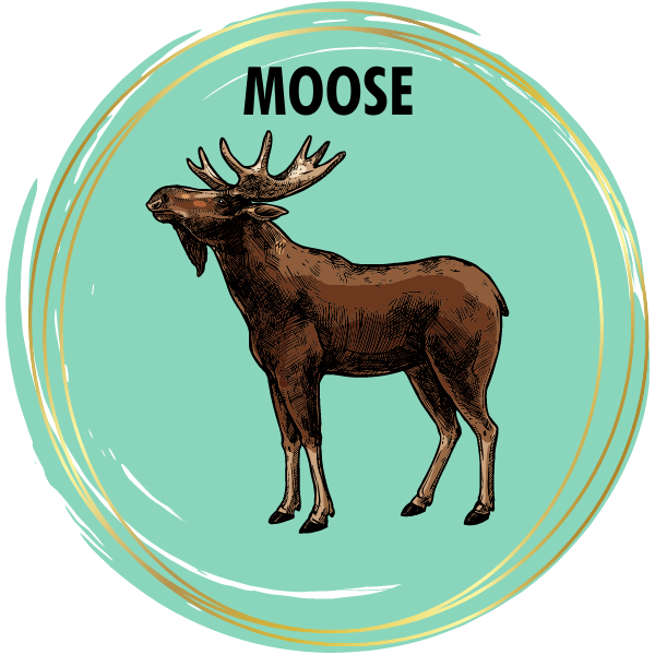 Moose Diamond Painting Kits