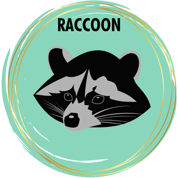 Raccoon Diamond Painting Kits