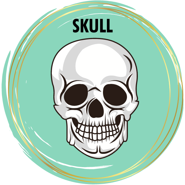 Skull Diamond Painting Kits