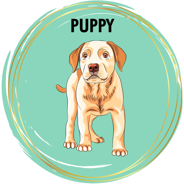 Puppy Diamond Painting Kits