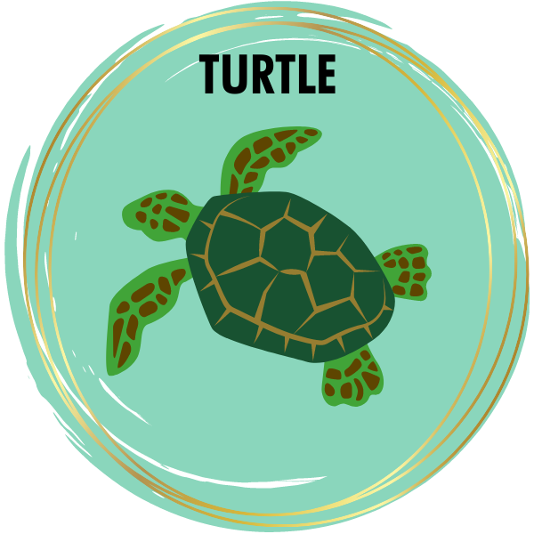 Sea Turtle Diamond Painting Kits