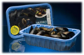 Live Blue Mussels Farmed