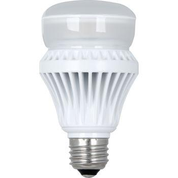 Led 13.5W A19 Light Bulb