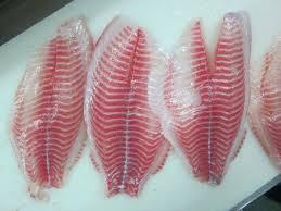 Tilapia Fillets Farmed