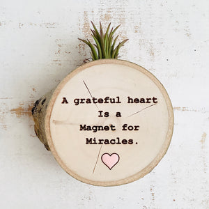 A Grateful Heart-Medium Wood Round (Air Plant Magnet or Photo Holder) - littlelightcollective