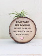 Load image into Gallery viewer, The Smallest Things - Medium Wood Round (Air Plant Magnet) - littlelightcollective