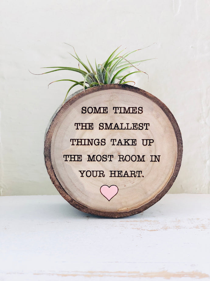 The Smallest Things - Medium Wood Round (Air Plant Magnet) - littlelightcollective