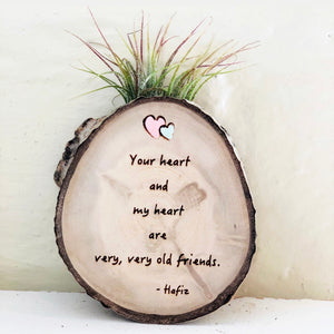 Old Friends Medium Wood Round (Air Plant Magnet or Photo Holder) - littlelightcollective