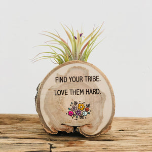 Find Your Tribe Medium Wood Round Magnet (Air Plant Magnet) - littlelightcollective