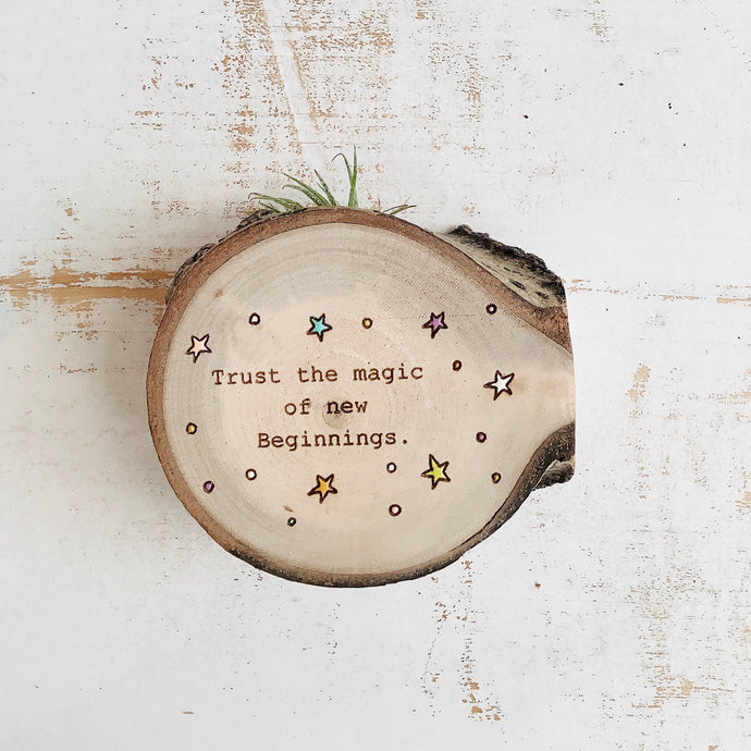 Trust the Magic - Wood Round (Air Plant Magnet) - littlelightcollective