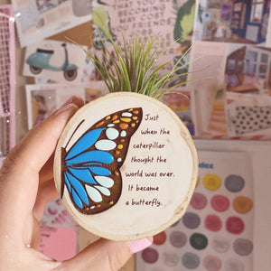 Handpainted Wooden Air plant magnet Butterfly - littlelightcollective