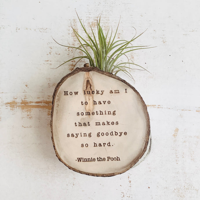 Saying Goodbye - Small Wood Round (Air Plant Magnet) - littlelightcollective