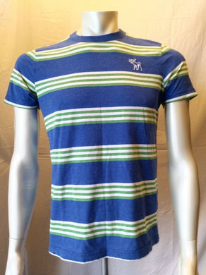 Abercrombie and Fitch Muscle Tee Men's Medium Blue Green Striped T Shirt