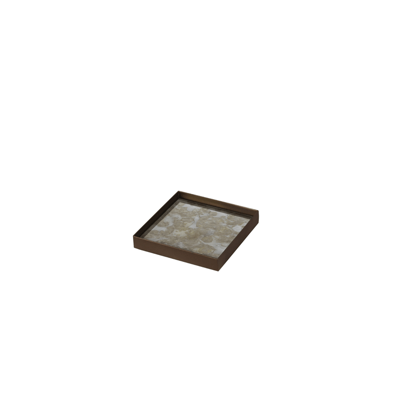 Organic Fossil Mini-tray