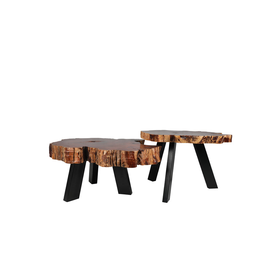 Aari 2-Tiered Coffee Table Set
