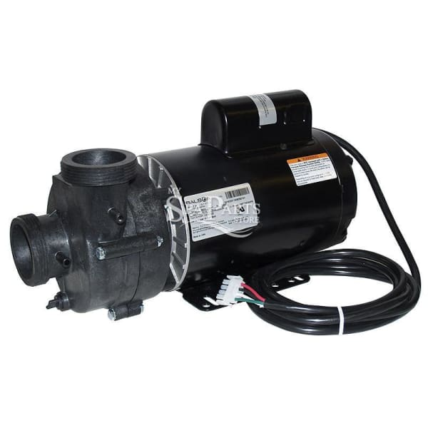 Vita Spa 2.5 Hp 230 Volt 2 Speed 8 8/3 Amps 56 Frame Pump And Motor PEN1016204